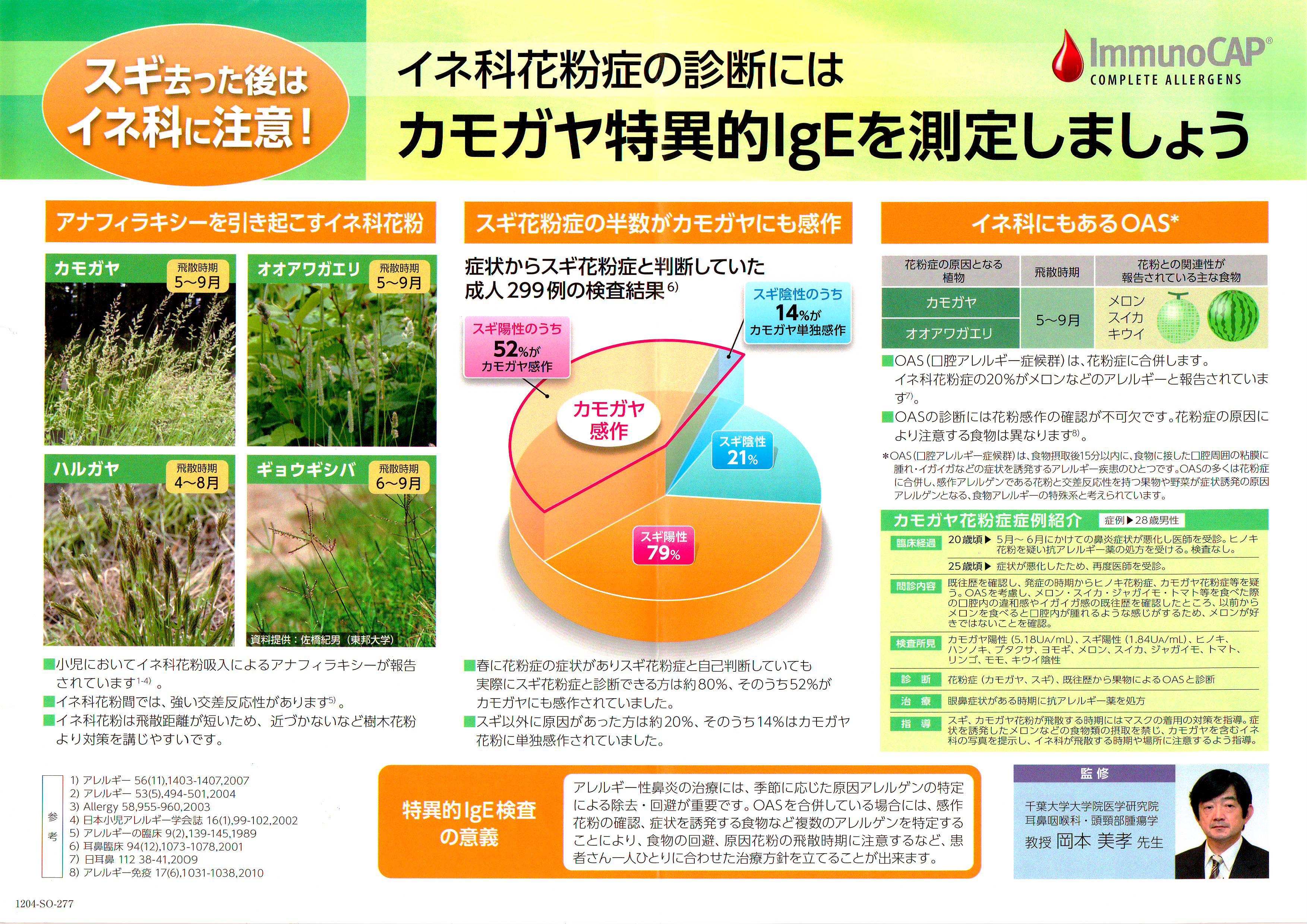 花粉 2020 カモガヤ カモガヤ 花粉症の方は注意してください。